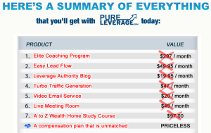 pure leverage products 300x1891 Pure Leverage Review   Should You Join Pure Leverage?